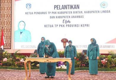Ansar Ahmad Gubernur Kepri ,Bisa Tambah PAD 200 M Tahun Ini Dari Gas Bumi